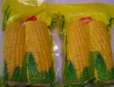 Vacuum Sweet Corn